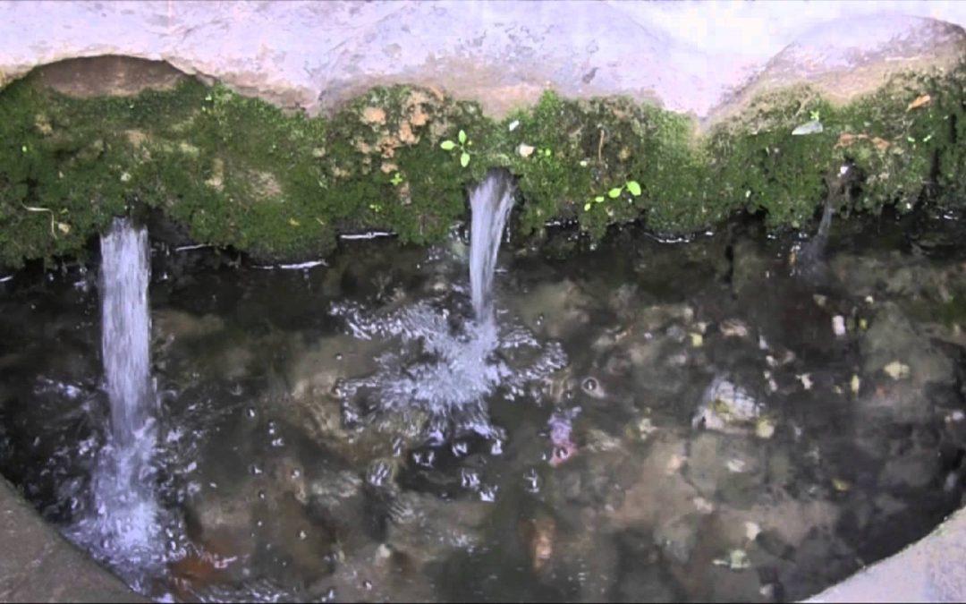 درباره آب معدنی چشمه بالای کوه